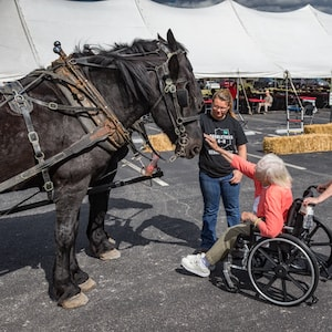 Woman in wheelchair petting horse at Fall Family Fest 2017